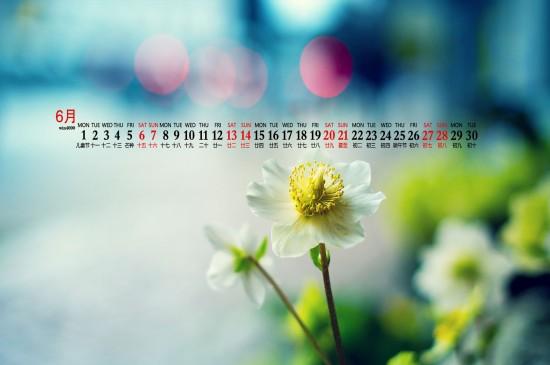 2020年6月绿色植物护眼