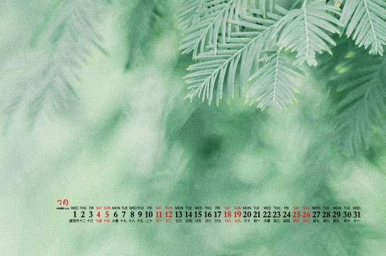 2020年7月简约自然绿色桌面日历壁纸