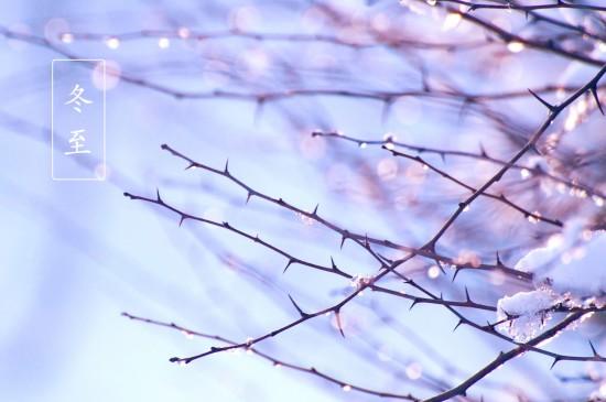<冬至唯美意境摄影高清桌面壁纸