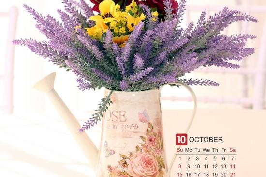 2017年十月花卉日历ipad壁纸下载