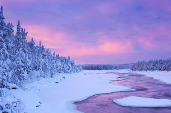 唯美森林雪景自然风景ipad壁纸下载
