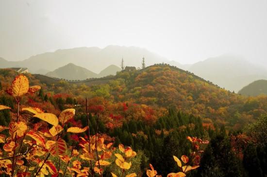 长城秋季美景摄影桌面壁