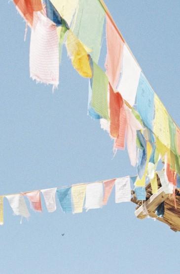 小清新唯美静物图片壁纸