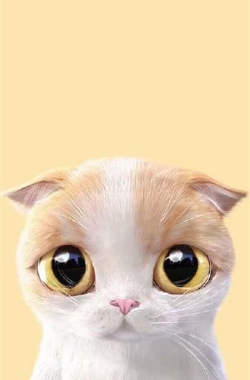 超萌可愛手繪小貓咪安卓