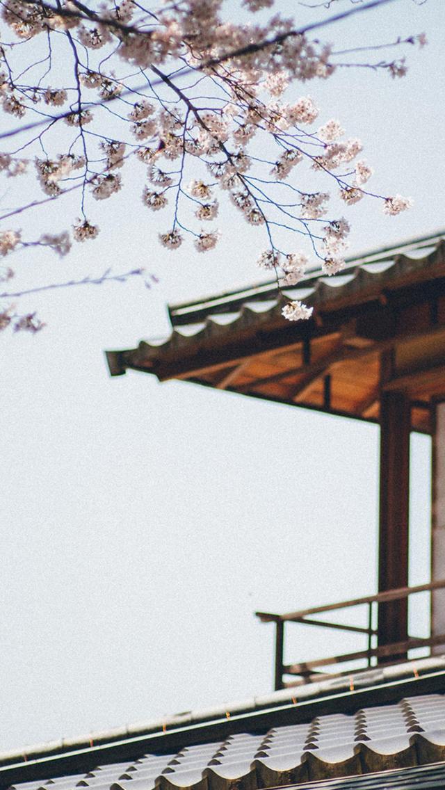 小清新日式庭院手机壁纸下载大全