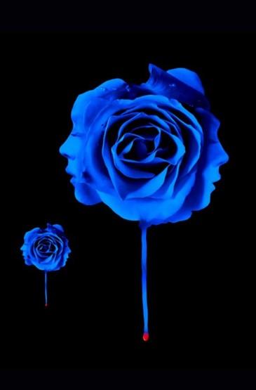 <唯美花朵蓝色妖姬手机桌面壁纸