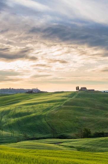 壮阔草原风景竖屏手机壁纸