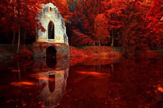 <红色树林湖泊倒影美景图片