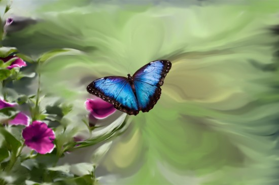 藍色蝴蝶唯美意境圖片