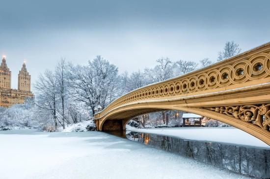 唯美雪景中央公园图片