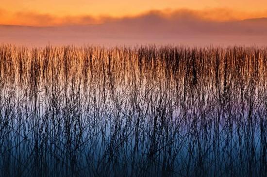 威斯康星州的水源荒野图