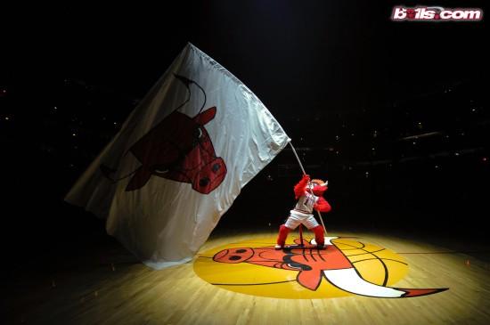NBA芝加哥公牛队高清图