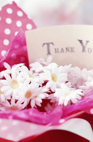 文艺范清新花朵盆栽高清手机壁纸