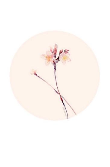 唯美手繪花卉新清植物手