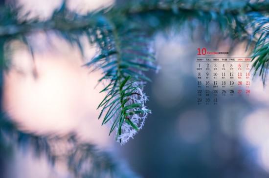 2018年10月绿色护眼植物