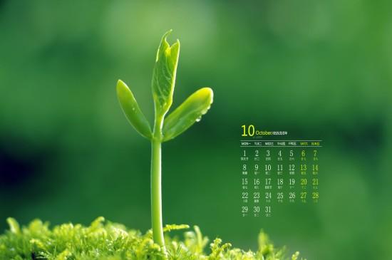 2018年10月绿色植物护眼高清日历壁纸