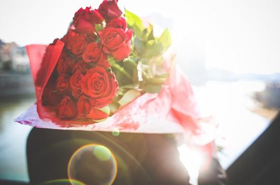 玫瑰花主题唯美高清电脑桌面壁纸图片