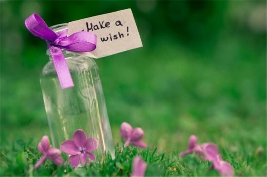 唯美意境花草植物高清桌面壁纸