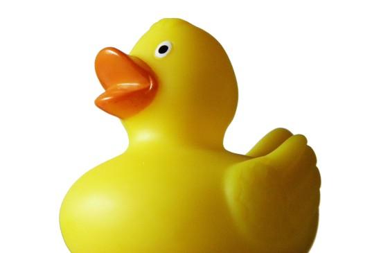 小黄鸭可爱创意玩具图片桌面壁纸