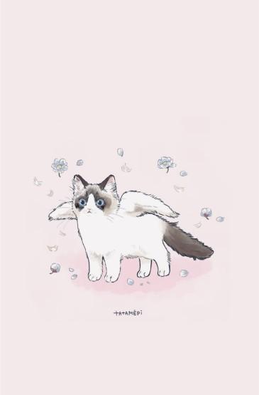 可爱呆萌卡通猫咪图片手机壁纸