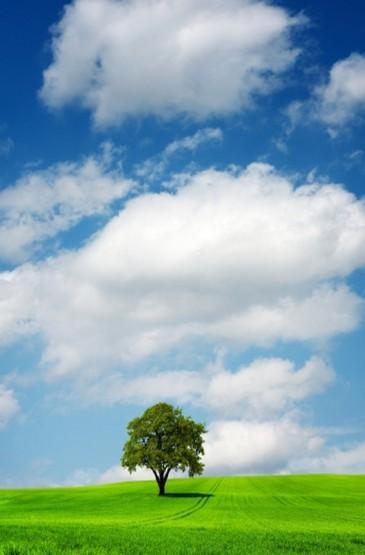 简约蓝天白云图片手机壁纸