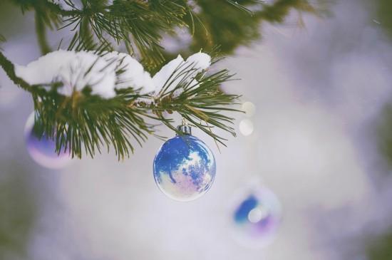 <圣誕樹海報素材圖片桌面壁紙