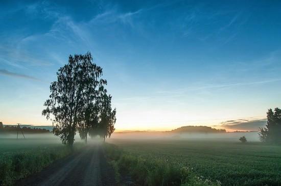 唯美秋季森林风景图片桌面壁纸