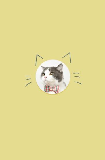 <简约背景可爱猫咪手机壁纸