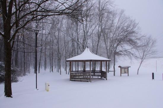 唯美冬季雪景图片高清桌面壁纸
