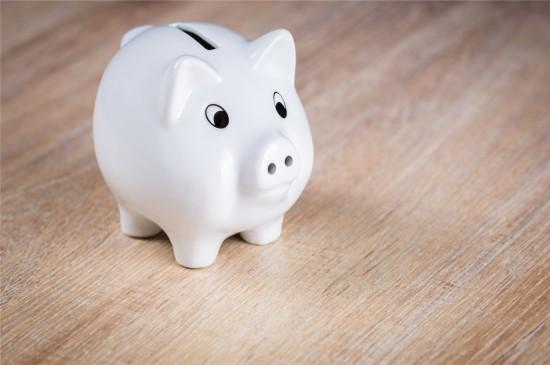 <可爱小猪静物高清桌面壁纸