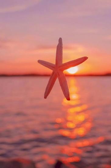 <黄昏夕阳风景手机壁纸图片