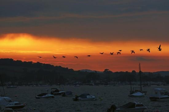 <唯美落日自然风景桌面壁纸