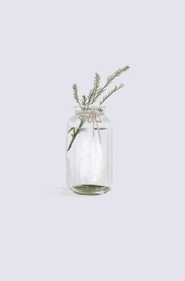 小清新植物插畫手機壁紙