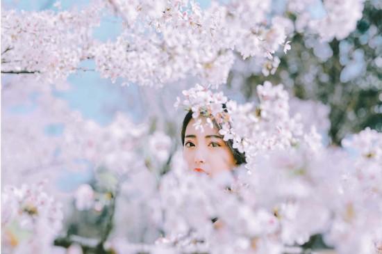 清纯仙气纱裙美女高清桌面壁纸