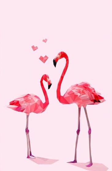 唯美粉色火烈鳥手機壁紙