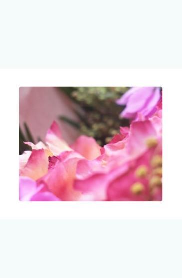 小清新唯美花卉图片手机
