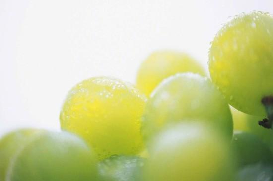 香甜可口的水果图片桌面壁纸