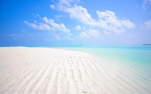 夏天美丽的大海简约风格