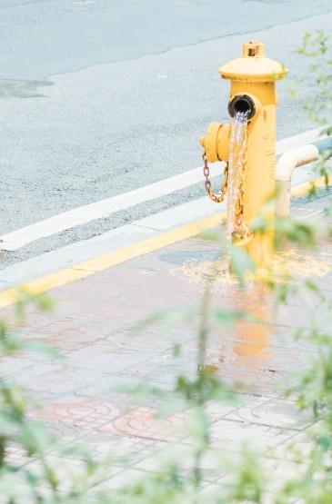 <绿色小清新风景手机壁纸图片