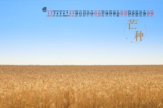 2019年6月二十四节气之芒种高清日历壁纸
