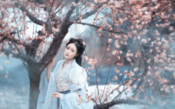 古典美女杏树下的柔情写