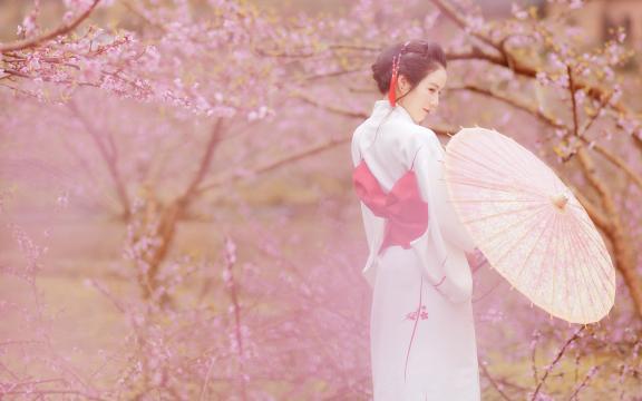 樱花树下的和服气质美女
