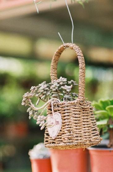 清新绿色植物盆栽手机壁纸