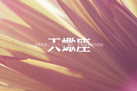 天蝎座文字语录图片桌面壁纸