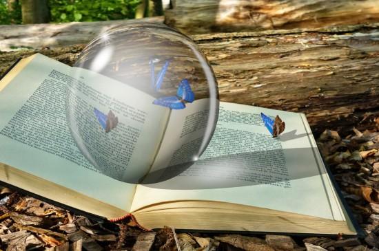 唯美透明的水晶球图片桌面壁纸