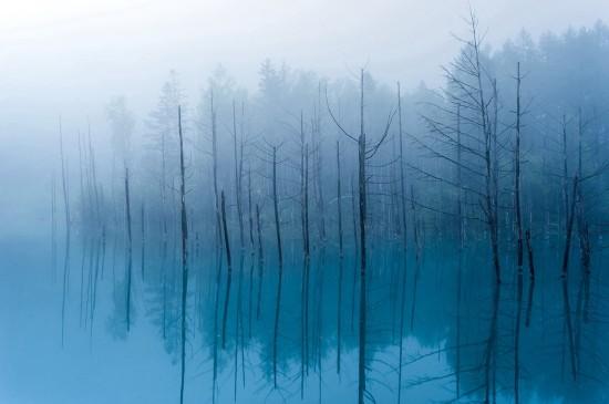 清新靜謐的湖泊風景桌面壁紙
