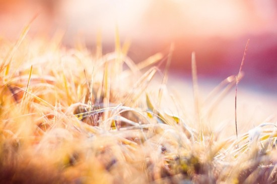 秋天唯美风景图片电脑壁纸
