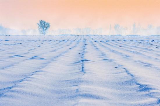 十二月唯美雪景高清桌面壁紙