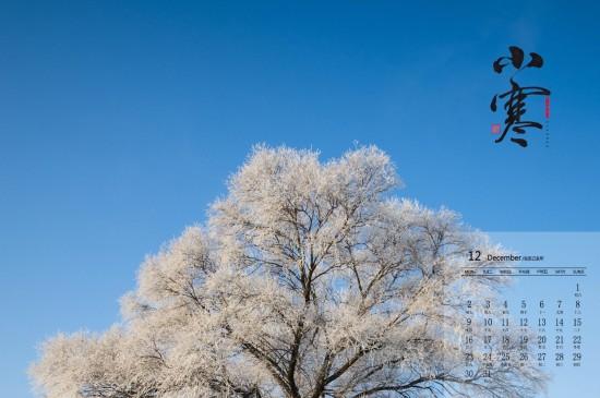 <2019年12月二十四節氣小寒高清日歷壁紙