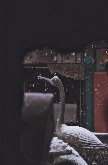 冬日故宮建筑攝影高清手